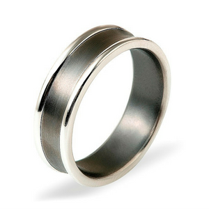Dora 9ct White Gold & Titanium ring