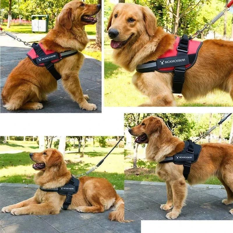 Reflektierende all-in-one No Pull-Hundegeschirr