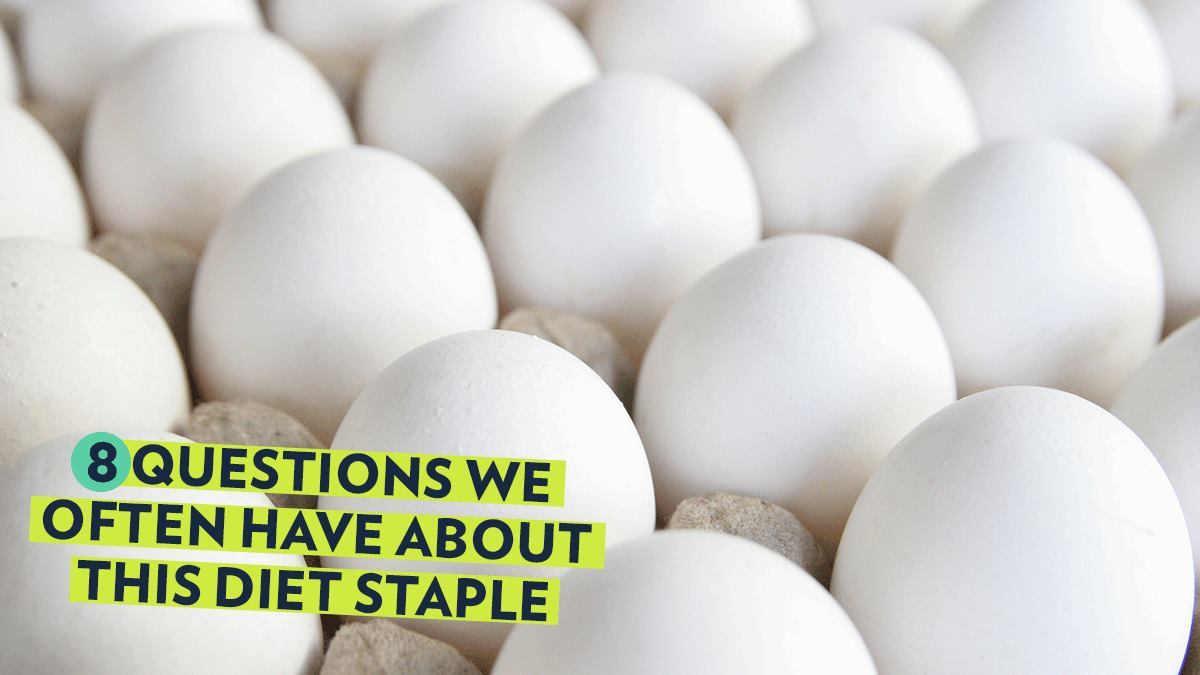 Image of Bodyrock blog article - Are Eggs Healthy? 8 Questions We Often Have About This Diet Staple