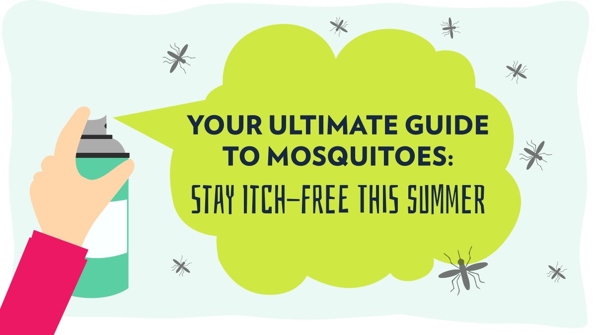 Image of Bodyrock blog article - Your Ultimate Guide to Mosquitoes: Stay Itch-Free This Summer