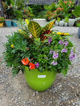 Load image into Gallery viewer, Premium Combo Planter 12""