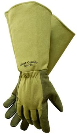 West County Rose Gloves