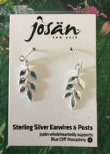 Load image into Gallery viewer, Josan Earrings