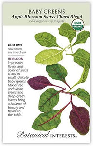Baby Greens - Apple Blossom Swiss Chard Blend