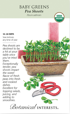 Baby Greens - Pea Shoots