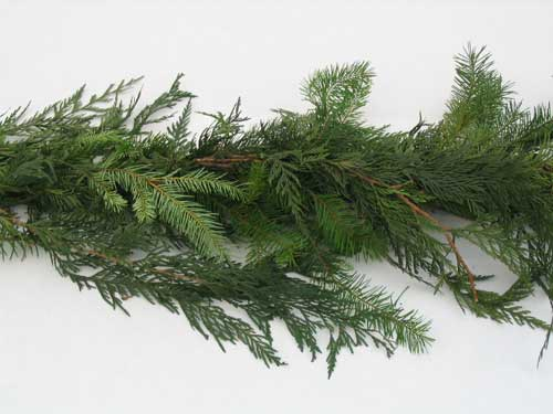 Roping - Mixed Evergreen (sold by the yard)