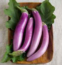 Load image into Gallery viewer, Eggplant