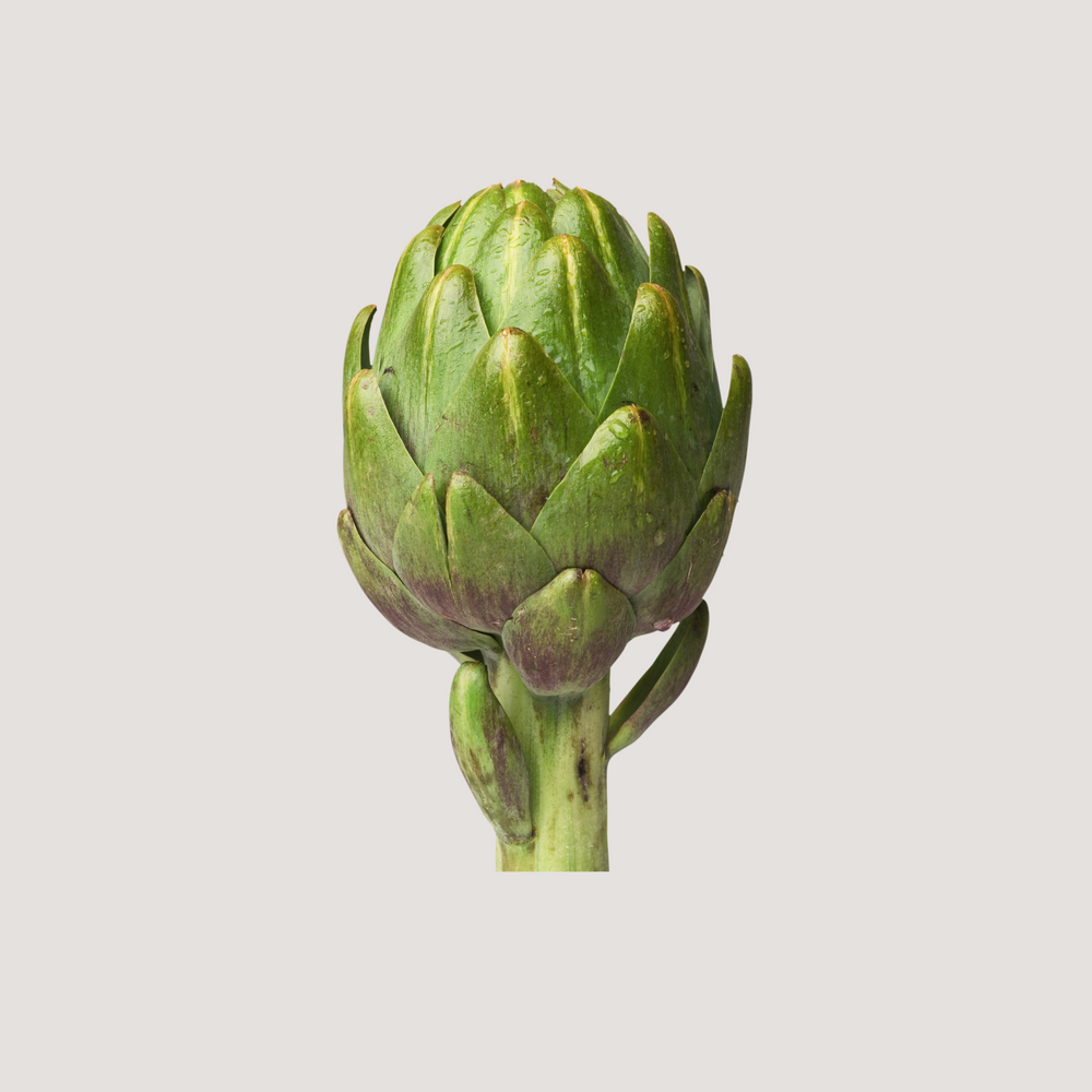 Load image into Gallery viewer, Artichoke, Globe
