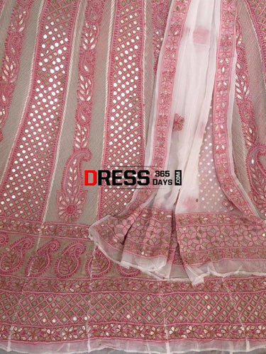 Mirror And Gota Patti Chikankari Anarkali Suit