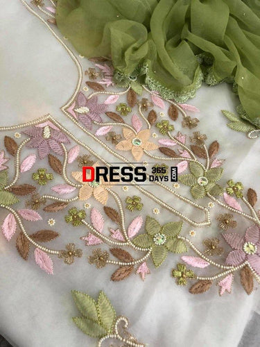 Multicolour Chikankari Neckline Organza Suit Suits