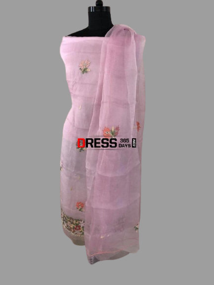 Organza Beads and Chikankari Suit