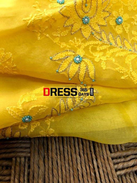 Organza Chikankari Beads Aari Zari Suit Suits