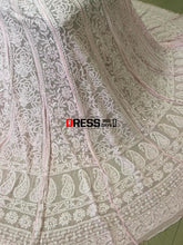 Load image into Gallery viewer, Powder Pink Pure Georgette Lucknow Chikankari Lehenga Set