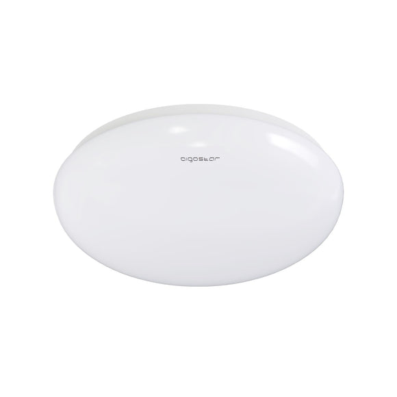 LED CEILING LIGHT 24W 6300K /SURFACE MOUNTED