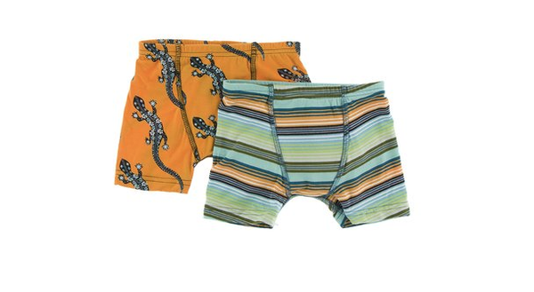 Kickee Pants Boxer Briefs Set (Apricot Bead Lizard and Cancun Glass Stripe)