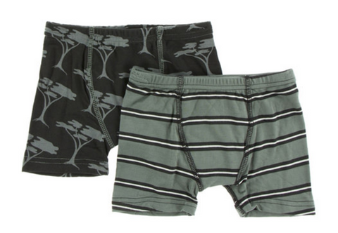 Kickee Pants Boxer Briefs Set Succulent Kenya Stripe and Zebra Acacia Tree