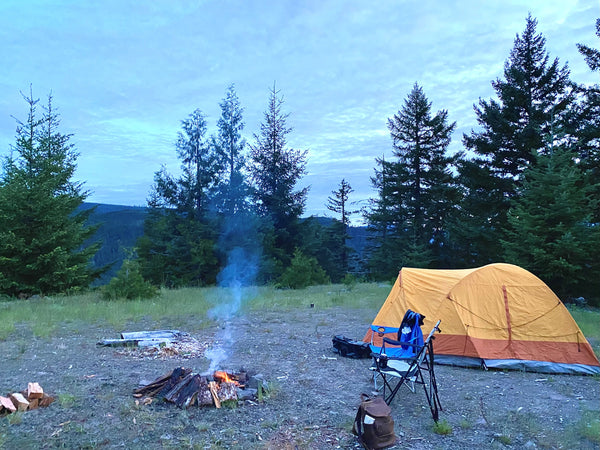 Campsite with campfire at twilight hour.