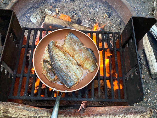 Camp fire cooking fish.
