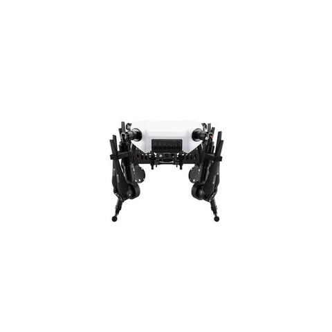 DJI Wind 1 - Sphere