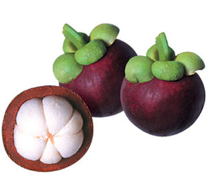 Blue Mangosteens