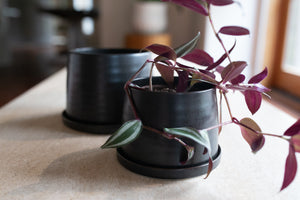 porcelain plant pot, black pot, pottery, #planters