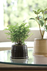 porcelain plant pot, taupe and black pots, pottery, #planters