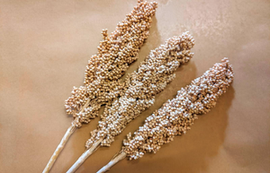 Dried Indian Millet
