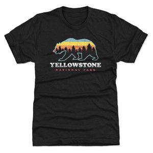 Yellowstone National Park Men's Premium T-Shirt | 500 LEVEL