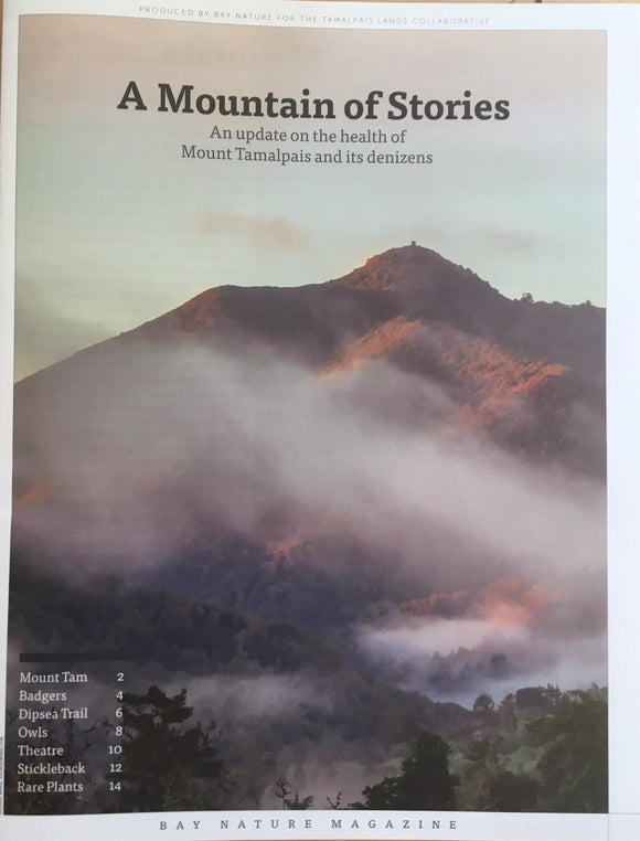 A Mountain of Stories; Mount Tamalpais