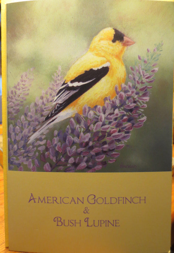 American Goldfinch & Bush Lupine notecard by Keith Hansen