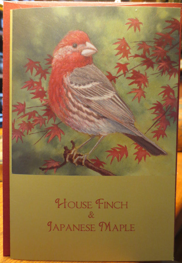 House Finch & Japanese Maple notecard by Keith Hansen