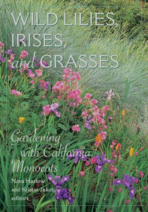 Wild Lilies, Irises, and Grasses