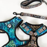 Dayzee Lane Jungle Fever Adjustable Harness