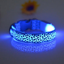Load image into Gallery viewer, Nylon Leopard Print LED Pet Collar