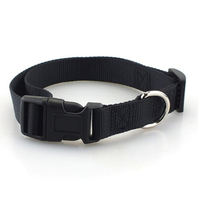 Nylon Pet Collar
