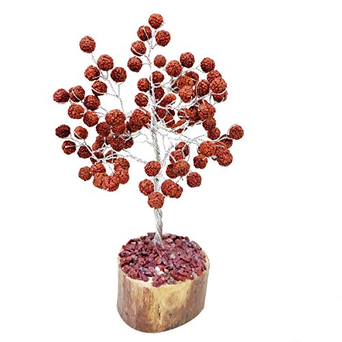 Rudraksha Beads Feng Shui Bonsai Money Tree Size: 7-8 Inch