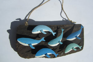 Shoeless Joe Shoal of Blue Whales on Driftwood