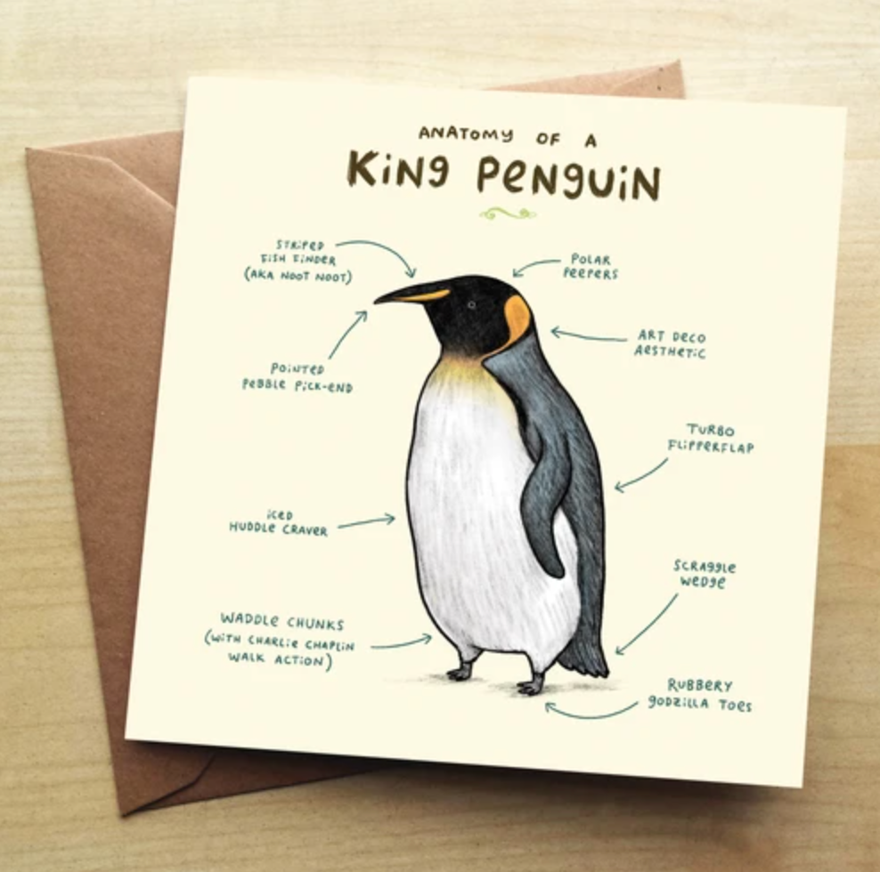 Greetings Card - Anatomy of a King Penguin