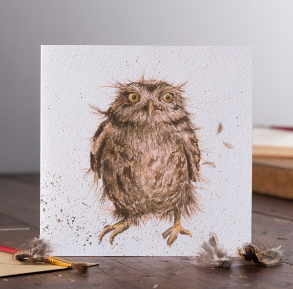 Greetings Card Wrendale Designs - What A Hoot