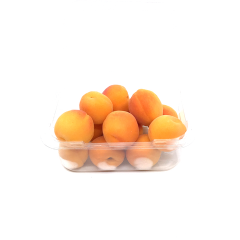Apricot: Mini Honey