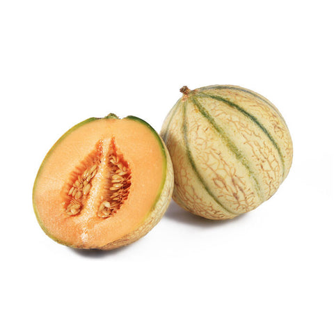 Melon: French Cantaloupe