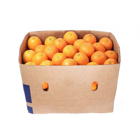 Lazy-Box: Oranges [Valencia, s]