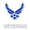 AIR FORCE VETERAN DECAL 1