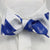 AIR FORCE WOVEN STRIPE BOW TIE
