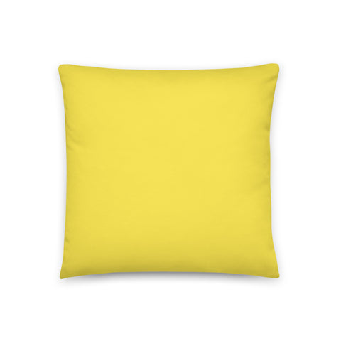 Choro D Fd3s Pillow