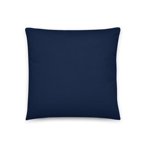Choro D Evo 3 Pillow
