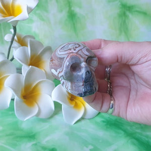 Crazy Lace Agate Skull – (ID: crf34)