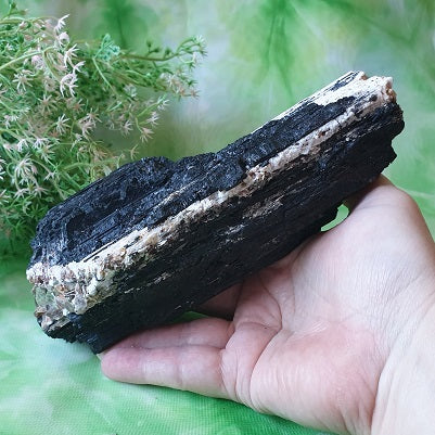 Black Tourmaline with Mica - (ID: crn14)