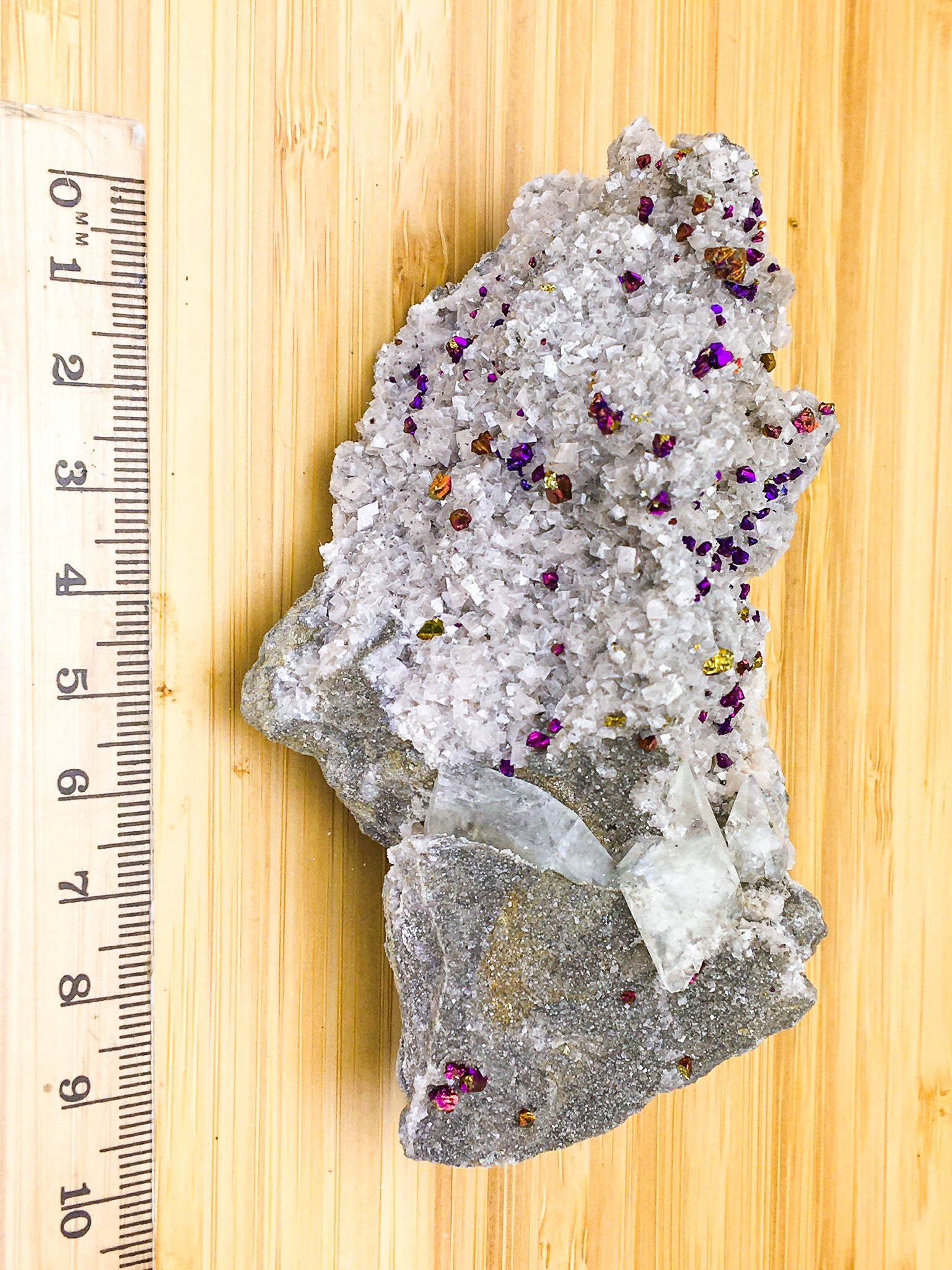 white tabular dolomite crystals, dogtooth calcite and irridescent purple and gold oxidised chalcopyrite. This sample is shown against a ruler. It is 10cm long