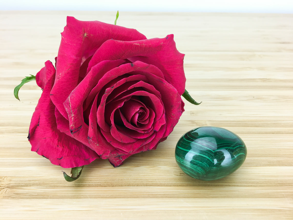 malachite egg next to a red rose for scale